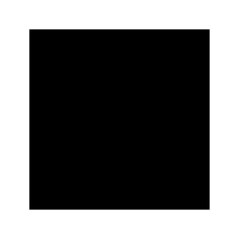 Naish T-Shirt Skull Black